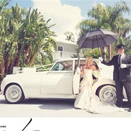 Vip Wedding Transportation photo