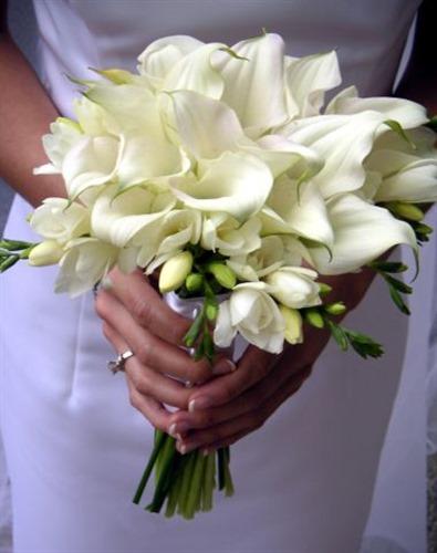 AriaStyle wedding vendor photo