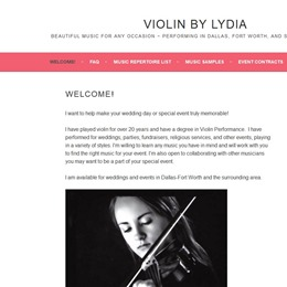 Violin by Lydia photo