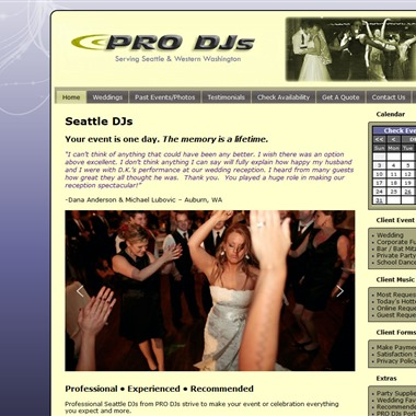 Pro DJs wedding vendor preview