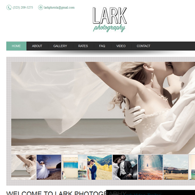 Lark Photo wedding vendor preview